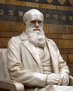 Darwin Among the Transhumanists