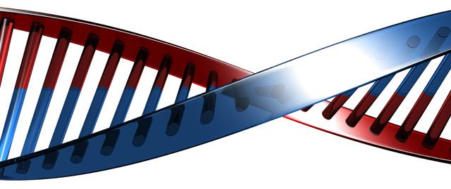 CRISPR and the Human Species