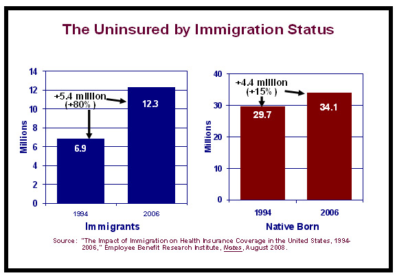 The Uninsured by Immigration Status