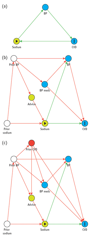 an example of a directed acyclic graph (dag)  this figure depicts the  mediation of the effect of sodium on cardiovascular disease (cvd) through  blood