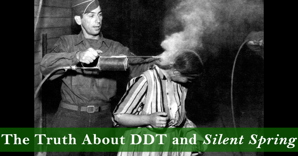 The Truth About DDT and Silent Spring - The New Atlantis